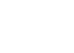 Ducks between Chucks